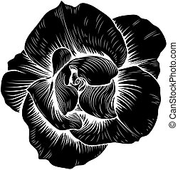 Rose Flower Vintage Woodcut Etching Engraved
