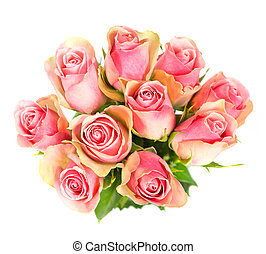 rose flowers bouquet isolated on white