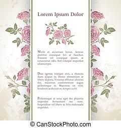 rose, flowers., hintergrund