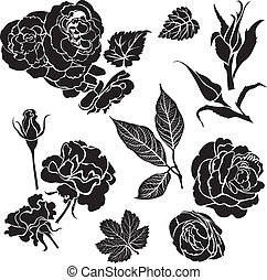 Set of black floral design elements - rose flowers