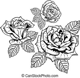 Rose Flowers with Leaves