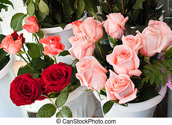 rose for retail trade - red and pink roses in a vase of...
