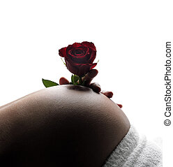 rose for unborn baby