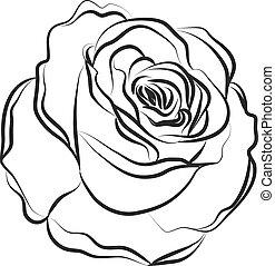 rose, form
