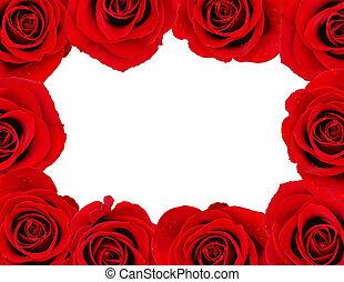 Rose frame - Frame of red roses