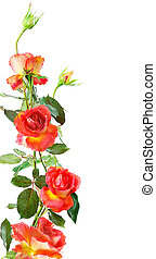 rose frame - floral vertical frame of red roses isolated on...