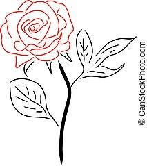 rose, freigestellt, abbildung, vektor, weißes, rotes