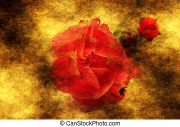 rose, grunge, arrière-plan rouge