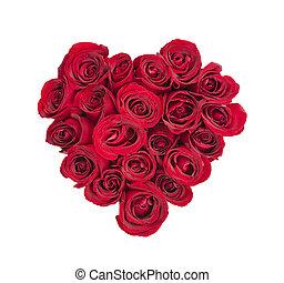 Rose heart - Heart made of fresh red roses on white...