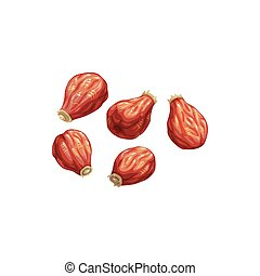 Rose hip dried fruits, dry food snacks vector icon. Dried rose hips, fruity sweets, diet nutrition and vegetarian natural organic food, healthy vegan eating, drinks and dessert ingredient
