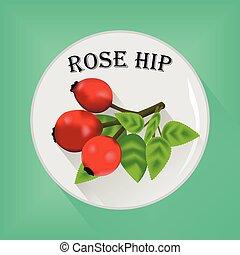 Rose hip seasoning sticker flat icon vector image on grey ...