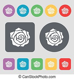 rose icon sign. A set of 12 colored buttons. Flat design. Vector