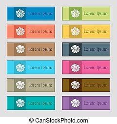rose icon sign. Set of twelve rectangular, colorful, beautiful, high-quality buttons for the site. Vector