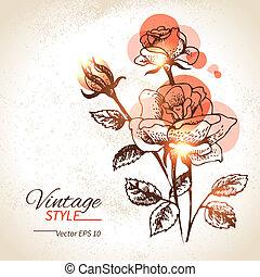 rose, illustration, main, arrière-plan., vendange, floral,...