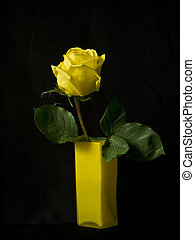Rose in a glass yellow vase