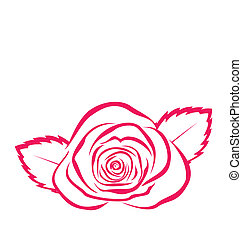 Rose in hand drawn style isolated on white background