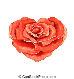 Rose in the shape of a heart