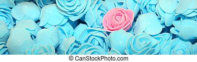 rose kwam op, op, de, achtergrond, van, velen, blauwe , rozen