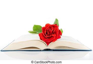 rose, Livre, fond, blanc, ouvert, rouges