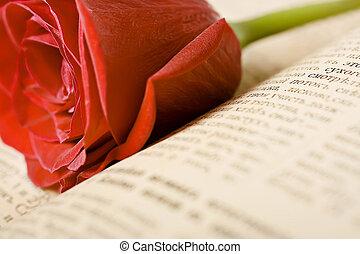rose, livre, rouges