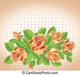rose, multa, scheda