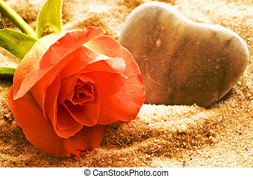 rose on a beach with heart