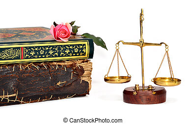 rose on a book and scales of justice over white background