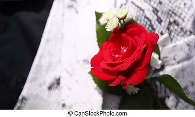 Rose on a white jacket buttonhole - man corrects his...