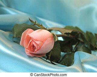 Rose on blue satin