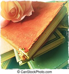 Rose on book stack