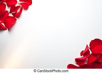 rose, papier, fond
