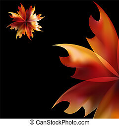 Rose petal Fire flaming flower