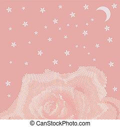 Rose petal flower shell on pink background