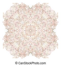 Rose petal flower shell on white background