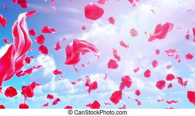 Rose Petals Falling from Sky (Loop)