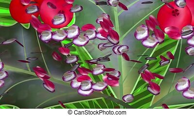 Rose petals on the abstract background
