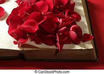 Rose petals over old aged book