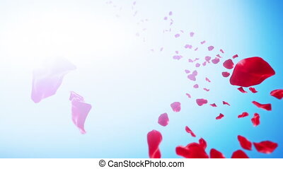 Rose Petals Sky Background (Loop)