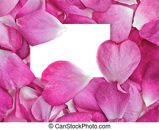 rose petals with card