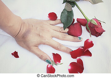 Rose petals with hand