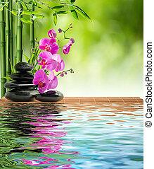 rose, pierre, noir, bambou, orchidée