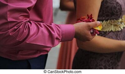 rose, poignée, haut, main, pétales, rice., fin, homme, vue
