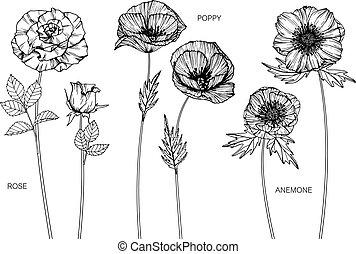 Rose, poppy, anemone flower drawing.