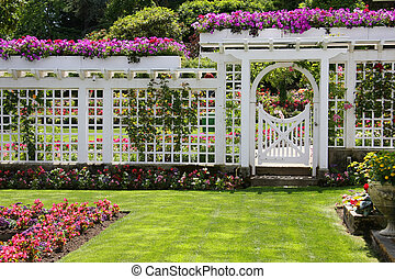 rose, porte jardin