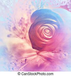 rose, rêveur, fond
