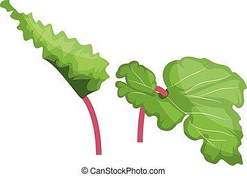 rose, rhubarbe, légumes, illustration, arrière-plan., ...