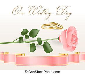 rose rose, anneaux, mariage