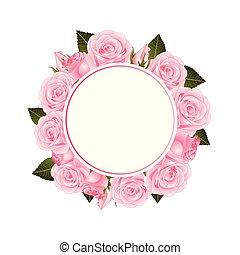 rose rose, fleur, bannière, couronne