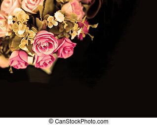 rose rose, sur, arrière-plan noir