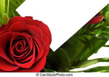 rose, rosso, 6